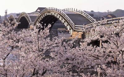 出典 http://www.pref.yamaguchi.lg.jp/gyosei/kanko/brand/images/hokori/kikoukouen.jpg