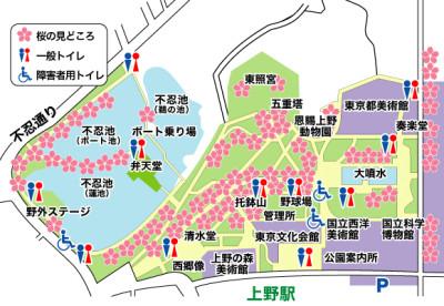 上野公園 桜 見どころ 地図