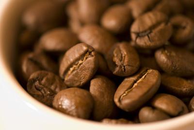 ナメクジ コーヒー