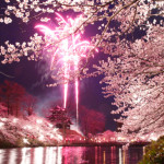 高田公園の桜2020開花見ごろライトアップはいつから?駐車場はあるの?