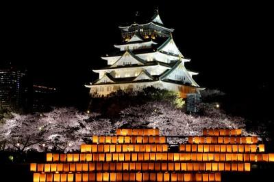 大阪城公園 夜桜