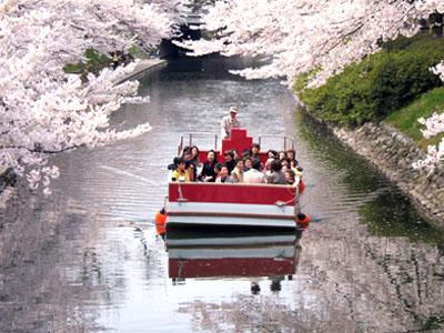 お花見遊覧船