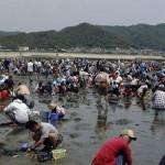 木更津で潮干狩りを混雑渋滞を避けて楽しめる穴場スポット!