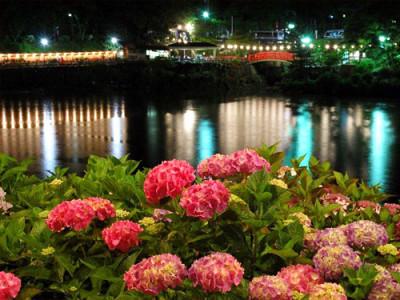 形原温泉あじさい祭り ライトアップ