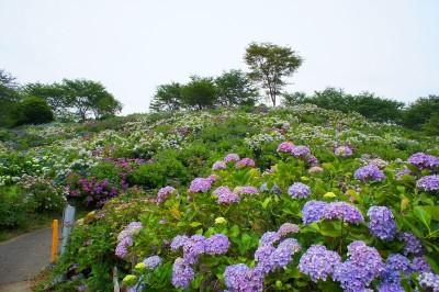 出典 http://guide.travel.co.jp/article/4017/#photo1
