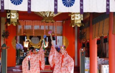 熊野那智大社 あじさい祭り